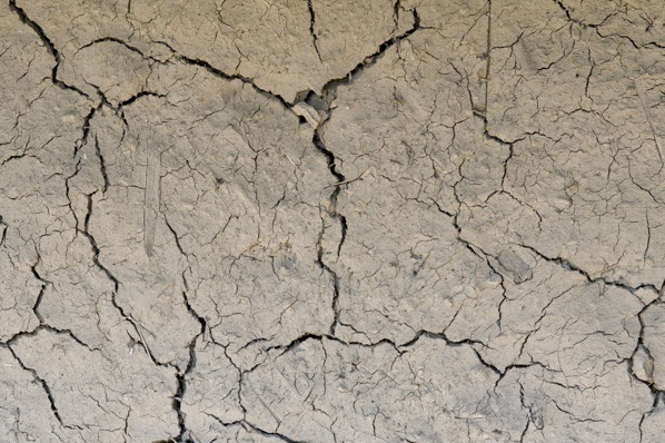 Dried and cracked ground... — preview